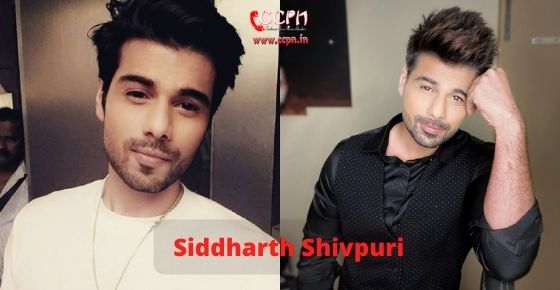 How to contact Siddharth Shivpuri