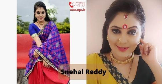 How to contact Snehal Reddy
