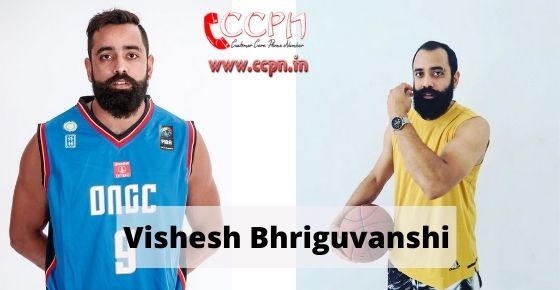 How to contact Vishesh-Bhriguvanshi