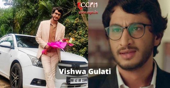 How to contact Vishwa Gulati
