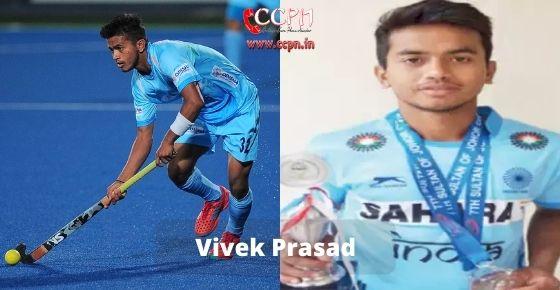 How to contact Vivek Prasad