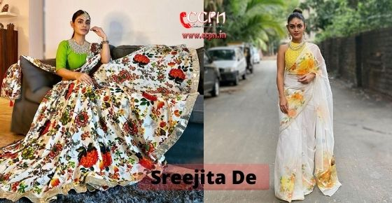 How to contact Sreejita De