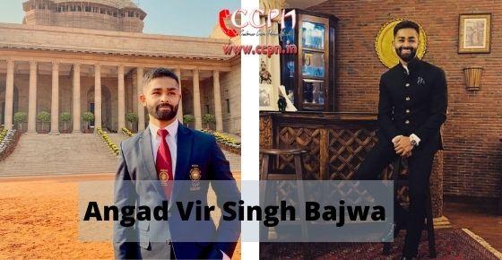 How to contact Angad-Vir-Singh-Bajwa