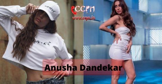 How to contact Anusha Dandekar