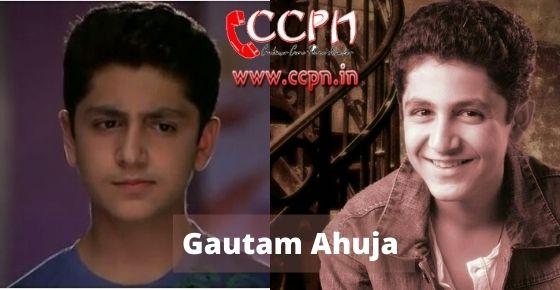 How to contact Gautam-Ahuja