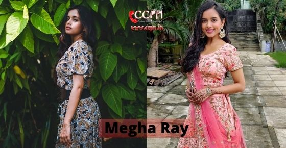 How to contact Megha-Ray