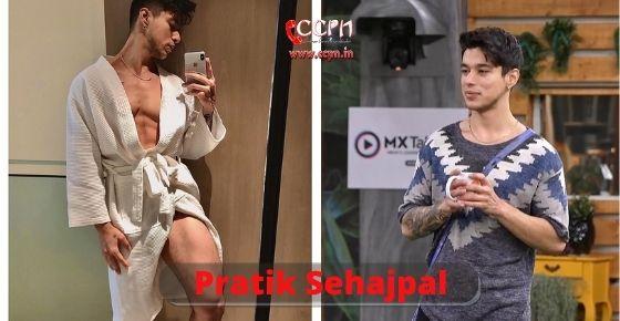 How to contact Pratik-Sehajpal