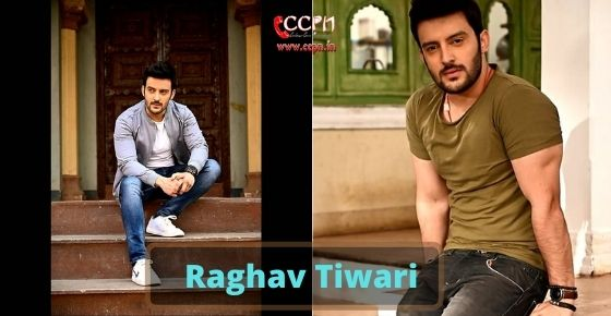 How to contact Raghav-Tiwari
