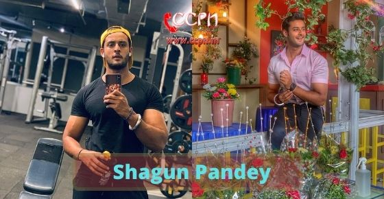 How to contact Shagun-Pandey