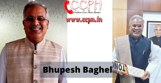 How to contact Bhupesh-Baghel