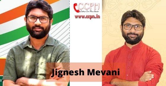 How to contact Jignesh-Mevani