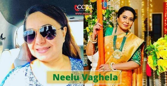 How to contact Neelu Vaghela